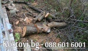 Рязане на дърва и клони